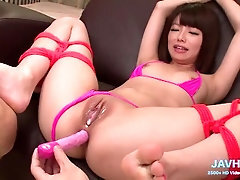 Assfuck The Barred Fruit is Delicious Vol 27